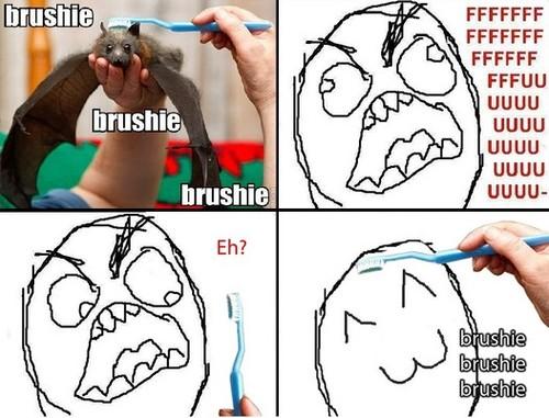 brushie