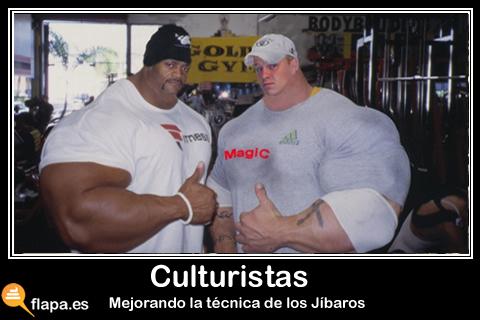 Culturistas.jpg