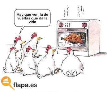 vida, vueltas, pollo, asado, refran, humor, funny, viñeta