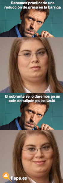 la gorda, meme, humor, flapa, viñeta, house, funny