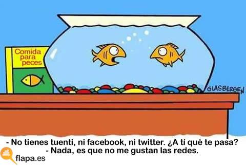 humor, informatica, redes sociales, tuenti, facebook, buzz, twitter, pez, agua, pecera