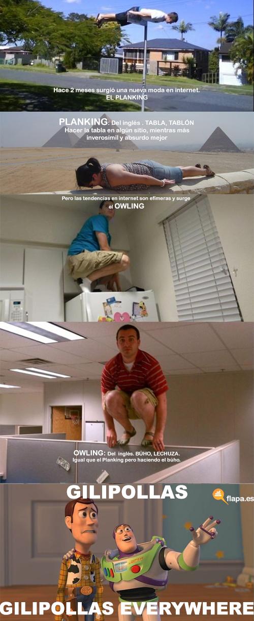 humor, planking , owling, internet, meme, pero esto que puta mierda es, flapa, funny