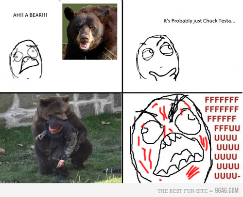 fffuuu, chuck testa, oso, viñeta, meme, humor