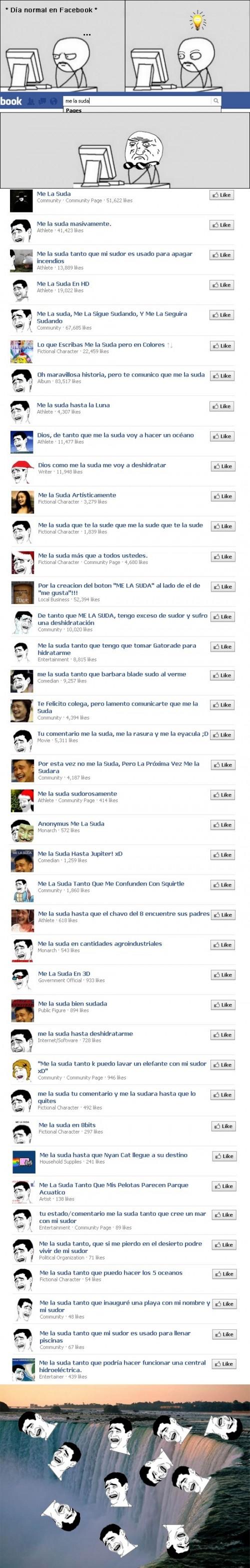 humor, flapa, viñeta, facebook, me la suda