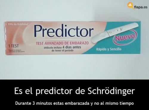 schrödinger, predictor, embarazo, como saber si estas embarazada, gato, física, viñeta, humor