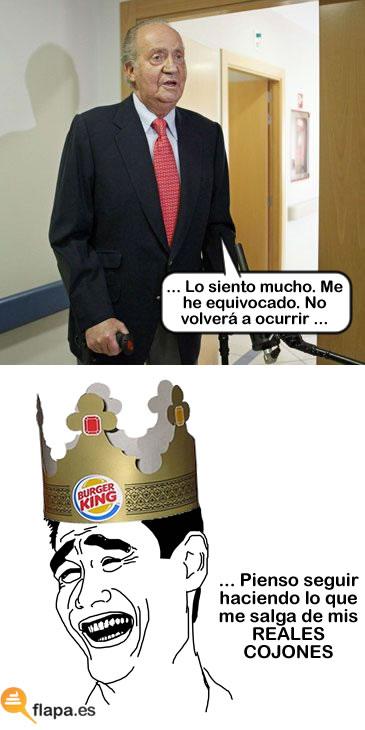 rey, perdon, disculpas, no lo volvere a hacer, me he equivocado, borbon, monarquia, viñeta, humor