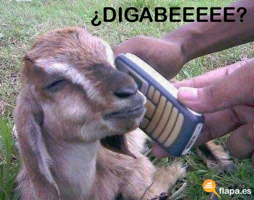 viñeta, humor, pamplina, cabra, telefono, pasharme