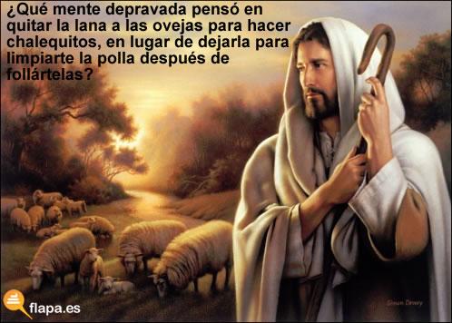viñeta, humor, jesus, oveja, zoofilia, lana, chalecos, polla, religion, RAJOY CABRÓN