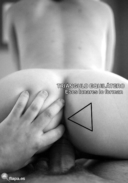 Flaporn, viñeta, humor, triángulo, equilatero, geometría, water cabrón