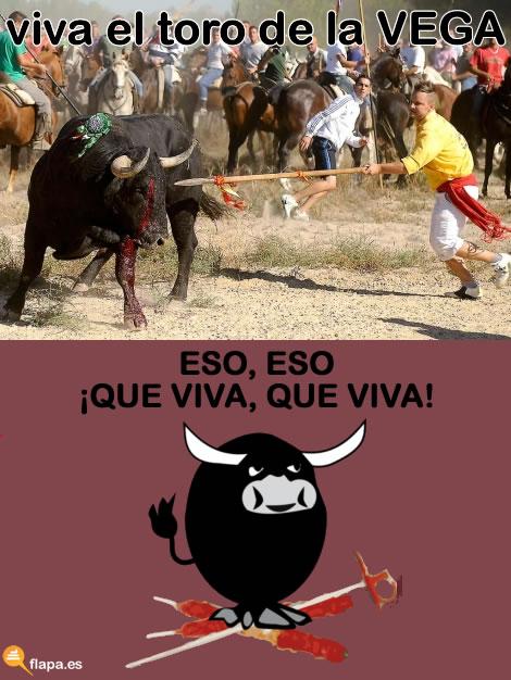 toro de la vega, viñeta, humor, muerte, taurinos, antitaurinos, torero, maltrato animal, no es cultura, no es arte, lanza